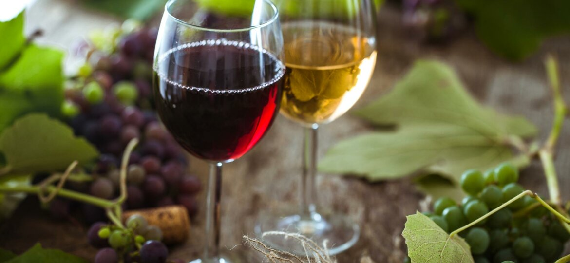 Should You Have Red or White Wine with Your Dinner Tonight?